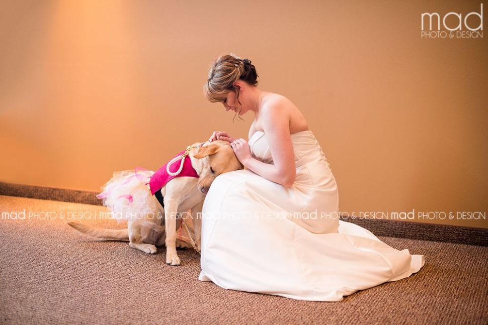 This Photo of a Bride and Her Dog Shows How Viral Media Works