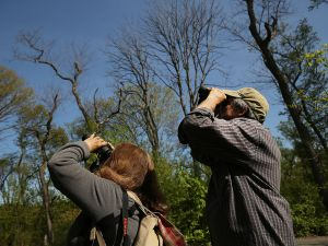 Bird watching in Prospect Park. (Photo: Spencer Platt/Getty Images)