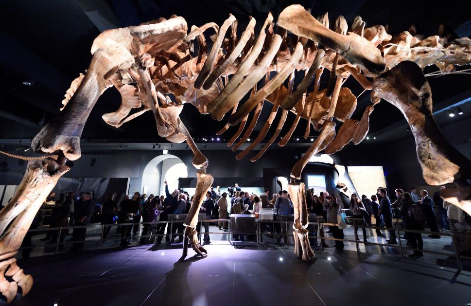 A 17-Foot-Tall Dinosaur Has Arrived in New York