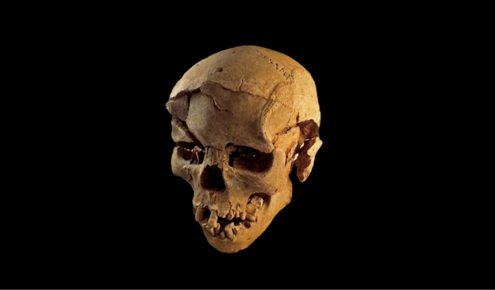 The Earliest Evidence of Violent Human Conflict Has Been Discovered