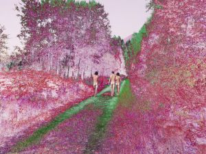 Sarah Anne Johnson, Pink Forest, 2015.