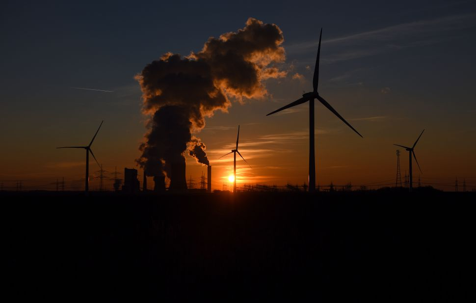 Why Are Renewables Buoyant Even as Oil Sinks?