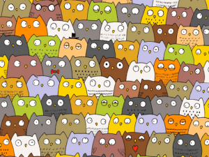 Find the cat among the owls.