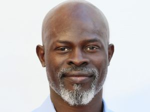 Djimon Hounsou. (Photo by David Livingston/Getty Images)
