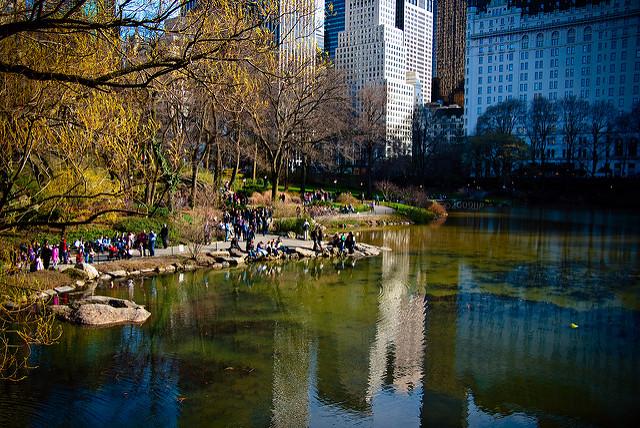 On the Market: Feeling Not So Fond of New York