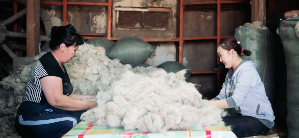The First Cashmere Fiber Certified by Cradle to Cradle™