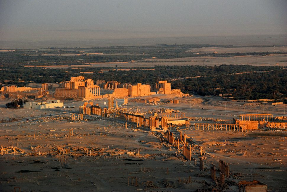 Islamic State Driven Out From Ancient City of Palmyra