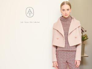 Ann Taylor Fall/Winter