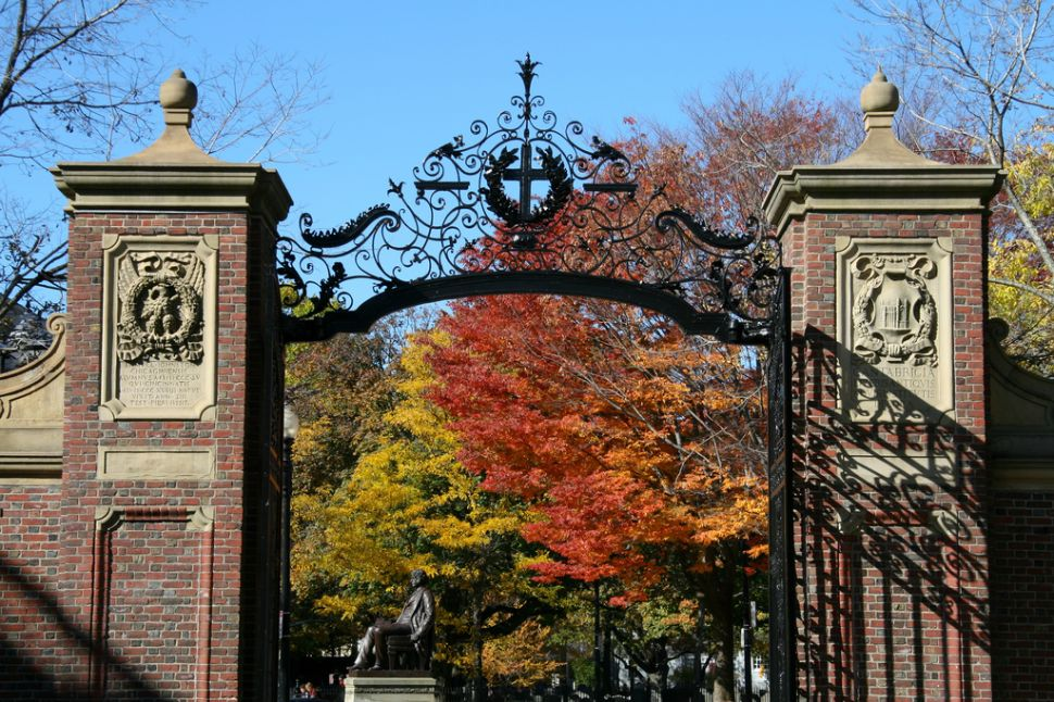 How Harvard Administrators Went Wrong on Single-Gender Groups