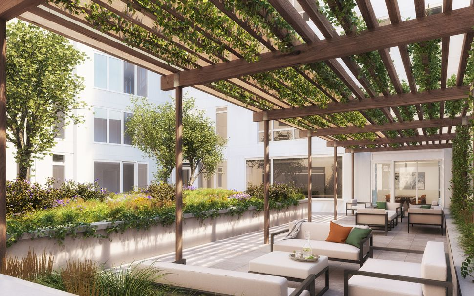 Green Acres: The Elusive, Shape-Shifting Urban Backyard
