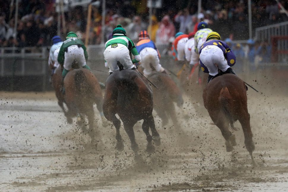 Off to the Races: Triple Crown Torture