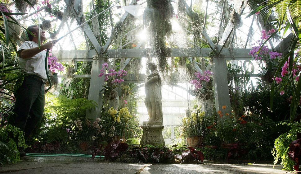 To Do This Week: New York Botanical Garden Opening Celebration