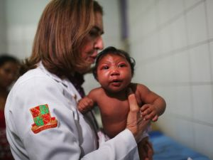 Brazil reported the first cases in the Americas of local transmissions of the virus last year.