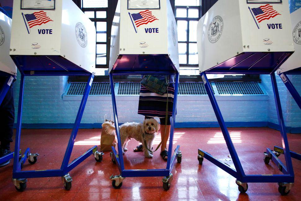 Observer Endorsements for 2016 Congressional Primaries
