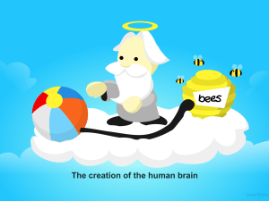 Creating of the human brain