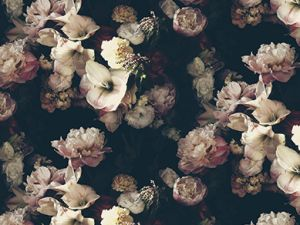 """One of Ashley Woodson Bailey's """"moody floral"""" wallpaper scenes."""