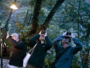 "Birdwatchers spot birds during the Birding Rally Challenge at ""Aguas Calientes"" near the Machu Picchu sanctuary in Cuzco on December 05, 2012. The Birding Rally Challenge is a competition, involving teams of well known birders, where participants must cover the greatest number of habitats within a relative small geographical area and in a limited amount of time, allowing them to appreciate the biodiversity of Peru. AFP PHOTO/ERNESTO BENAVIDES (Photo credit should read ERNESTO BENAVIDES/AFP/Getty Images)"