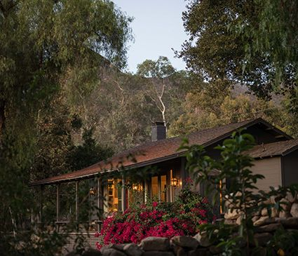 A holistic retreat for burnt out businesswoman mamas.