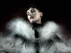 A dress by designer Iris van Herpen, who, with her runway designs, challenges common fashion norms and beliefs.