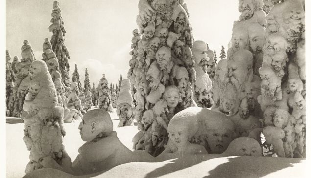 "Postcard of manipulated photograph titled ""Snow ghosts in the forest."" Switzerland, 1931."