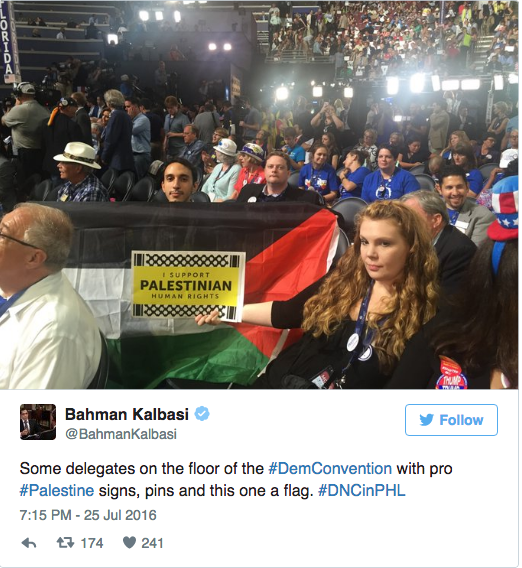 Stark Waving Mad: The Palestinian Flag Has No Place at the DNC