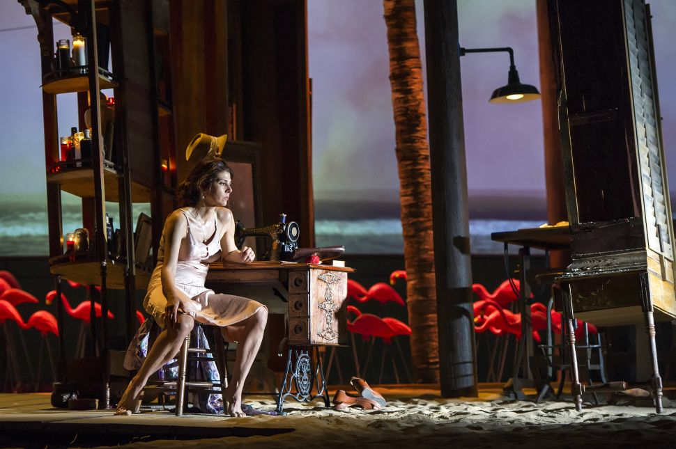 'The Rose Tattoo' Opens Williamstown Theatre Festival