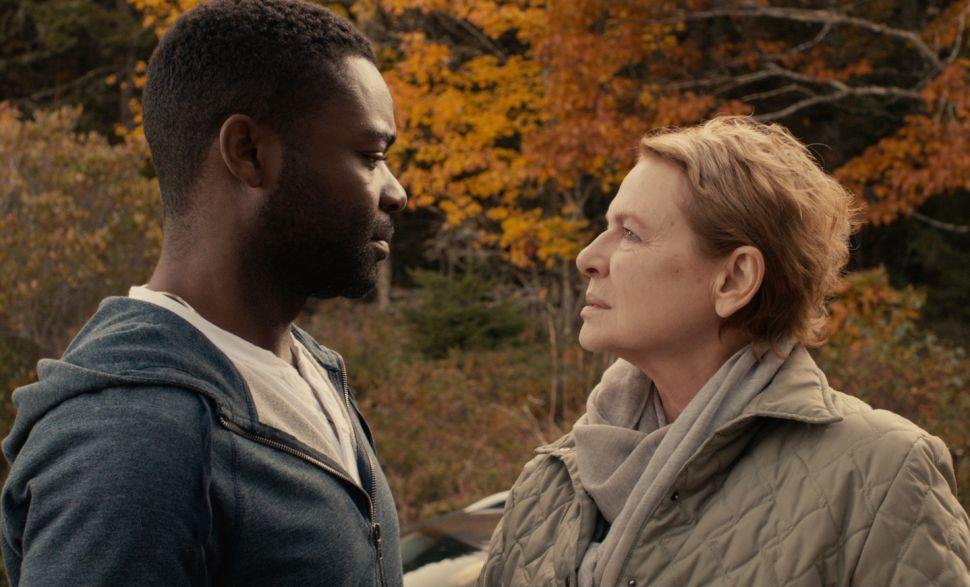 'Five Nights in Maine' Is Inconsequential, Despite the Superb Dianne Wiest