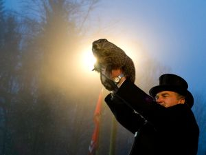 Groundhog handler John Griffiths holds Punxsutawney Phil after he saw his shadow predicting six more weeks of winter during 128th annual Groundhog Day festivities on February 2, 2014 in Punxsutawney, Pennsylvania.