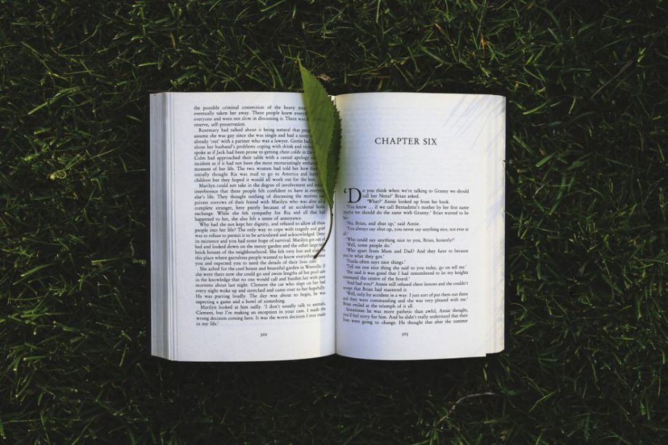Why Books Are the Ultimate Mentors in Life