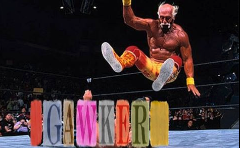 The Internet Is Having a Field Day With Hulk Hogan vs. Gawker Memes