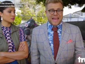 "Adam Conover says ""keep your cat indoors!"
