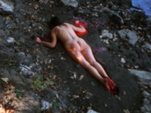 Ana Mendieta's Silueta Sangrienta 4.