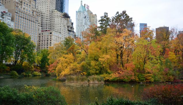 What's going to happen to real estate this autumn?