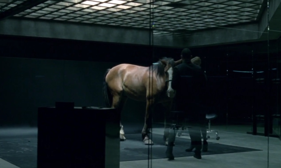 A Quick Word From: A Horse on 'Westworld' Who Doesn't Really Mind if He Is a Robot