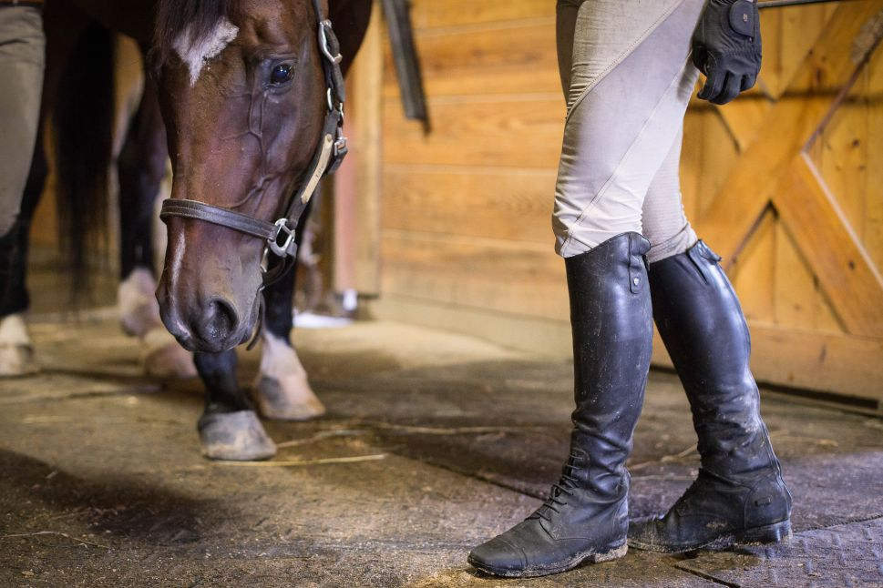 At the Millbrook Fox Hunt, Women Take the Reins