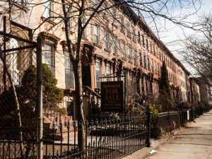 Bedstuy Brownstones PHOTO: Emily Assiran for Observer