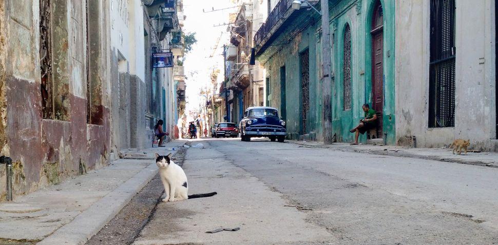 In Cuba, No Cash for Gringos