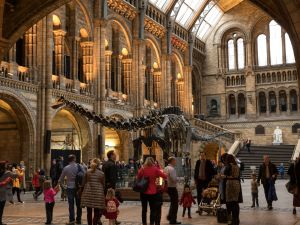 Members of the public walk around 'Dippy' the Diplodocus at Natural History Museum on January 4, 2017 in London, England. The 70ft long (21.3m) plaster-cast sauropod replica, which is made up of 292 bones, is set to leave the Natural History Museum in London, where it has been for 109 years, before going on a national tour. Dippy will be replaced by an 83 foot long real skeleton of a Blue Whale, which will be hung from the ceiling.