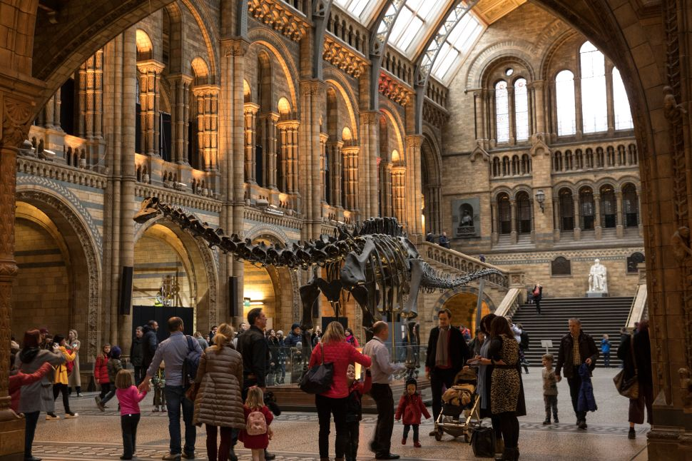 London's Dippy the Dino to Embark on UK Tour, Campaign to Replace NYC Ads With Art
