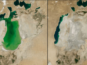 """Shrinking Aral Sea, central Asia August 25, 2000 - August 19, 2014 """"The Aral Sea was the fourth largest lake in the world until the 1960s, when the Soviet Union diverted water from the rivers that fed the lake so cotton and other crops could be grown in the arid plains of Kazakhstan, Uzbekistan and Turkmenistan. The black outline shows the approximate coastline of the lake in 1960. By the time of the 2000 image, the Northern Aral Sea had separated from the Southern Aral Sea, which itself had split into eastern and western lobes. A dam built in 2005 helped the northern sea recover much of its water level at the expense of the southern sea. Dry conditions in 2014 caused the southern sea's eastern lobe to dry up completely for the first time in modern times. The loss of the moderating influence of such a large body of water has made the region's winters colder and summers hotter and drier. """""""