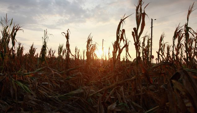 One primary concern in rural areas: higher temperatures put strain on water and energy sources.