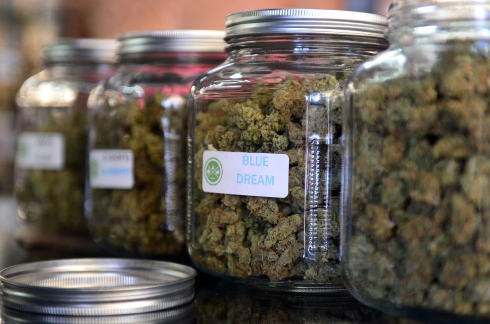 NJ's Marijuana Push Could Bring New High in Special Interest Spending