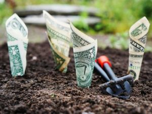 Making environmentally friendly changes will save you money.