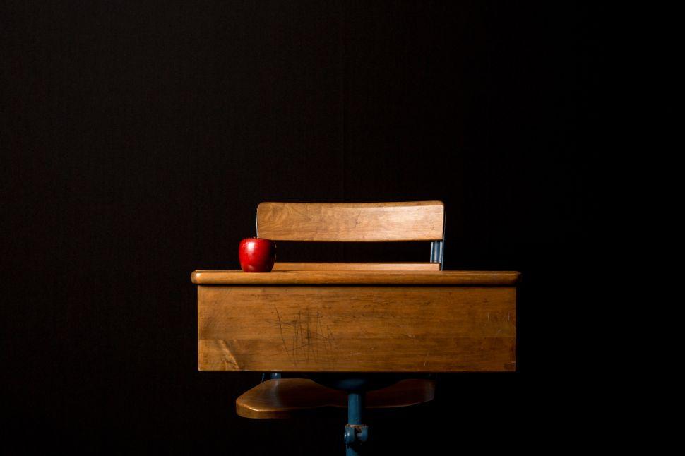 Progressives—Not Trump—Need to Fix Our Public School Crisis