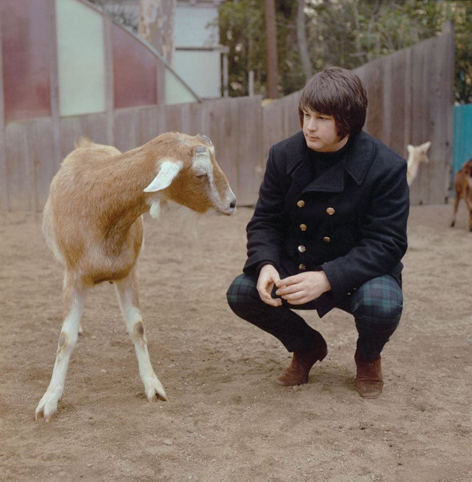 Brian Wilson on How It Feels to Retire Performing 'Pet Sounds'