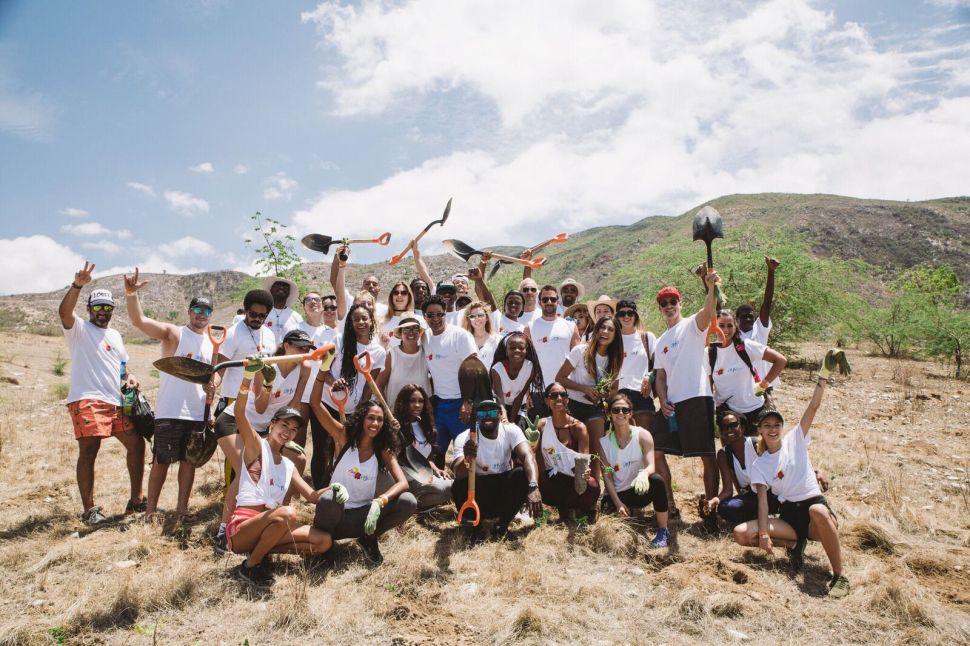 Planting for the Future: Haiti's Hidden Deforestation Crisis