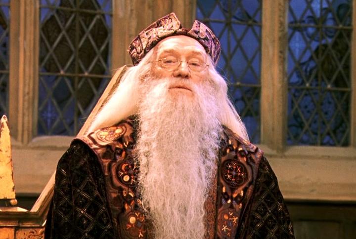 O.K., but Ian McKellen Definitely Should Have Taken the Role of Dumbledore