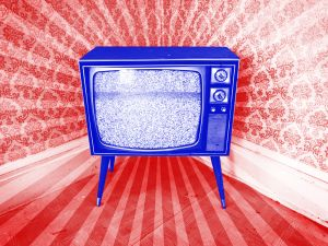 Political campaigns will be able to pinpoint individual voters through their television sets.