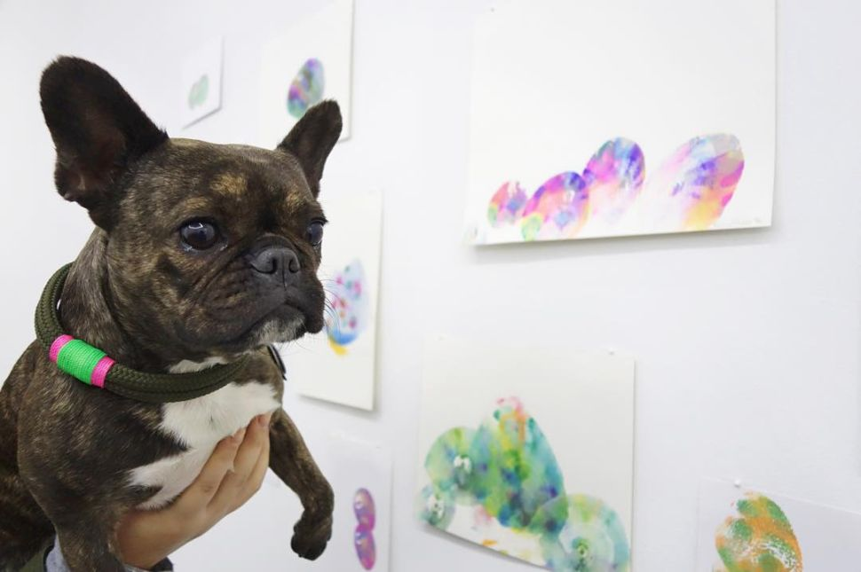 This Art Show Is Only for Dogs and the End Is Nigh