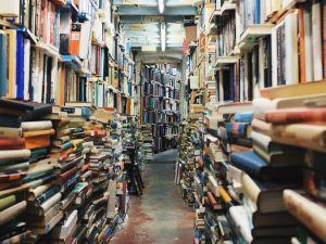 Non-search friendly bookstore.